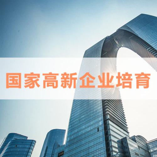 國家高新企業培育